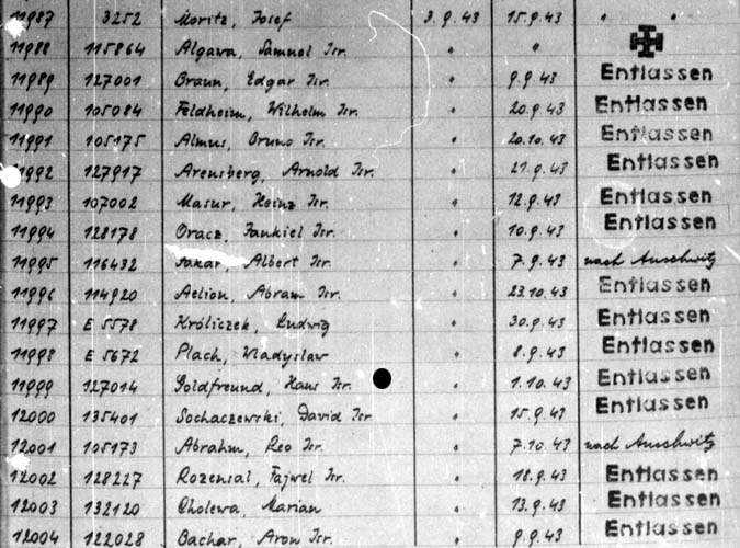 Auschwitz III Monowitz hospital register 1943, 3 Sept: Hans Goldfreund